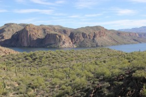 Today we took the drive through Apache Trail. The views through out the drive are incredible.